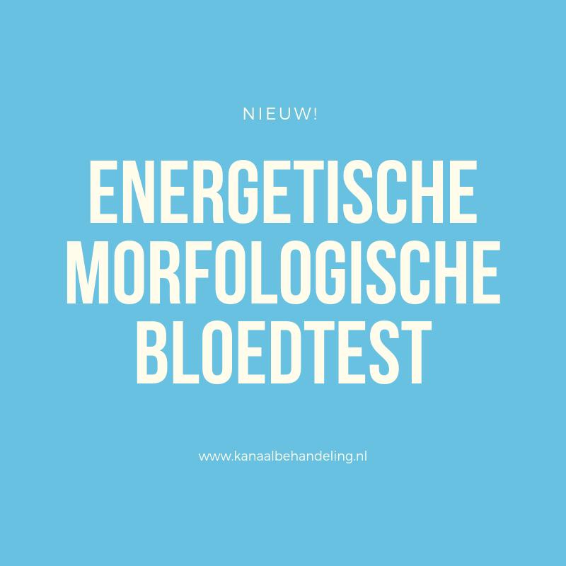 Nieuw - Het Energetische Morfologische Bloedtest (EMB)
